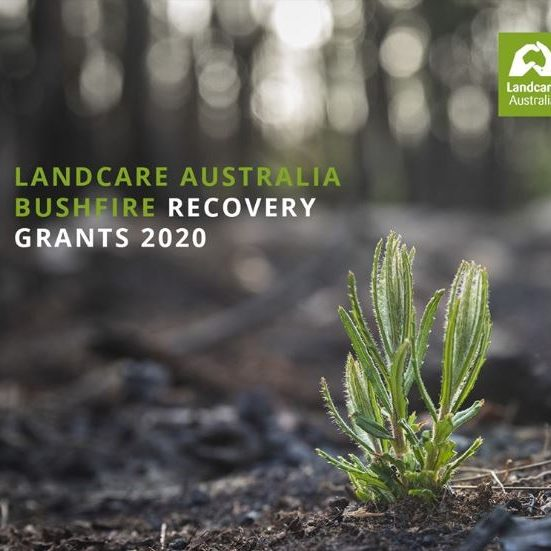 Lancare Bushfire Grants