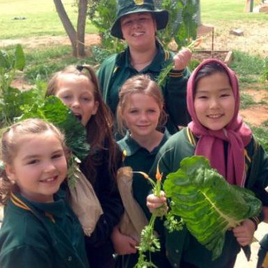 Landcare Grants