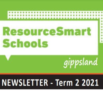 RSS Newsletter T2