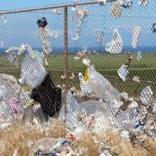 Wire fence with rubbish blown onto it